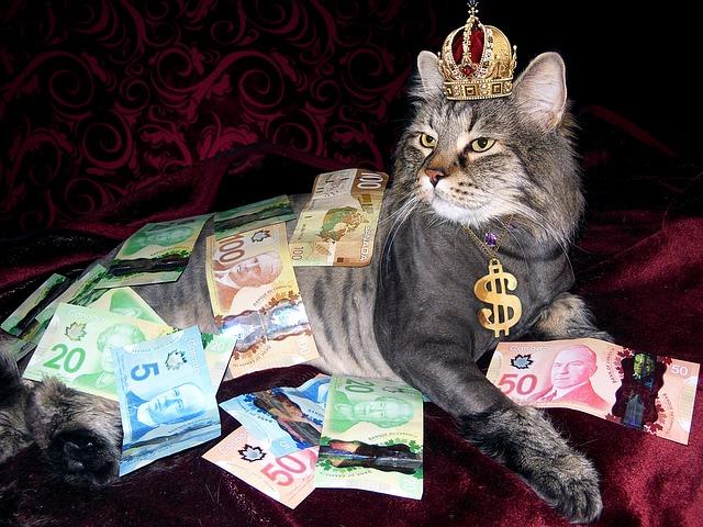 Sny o penězích